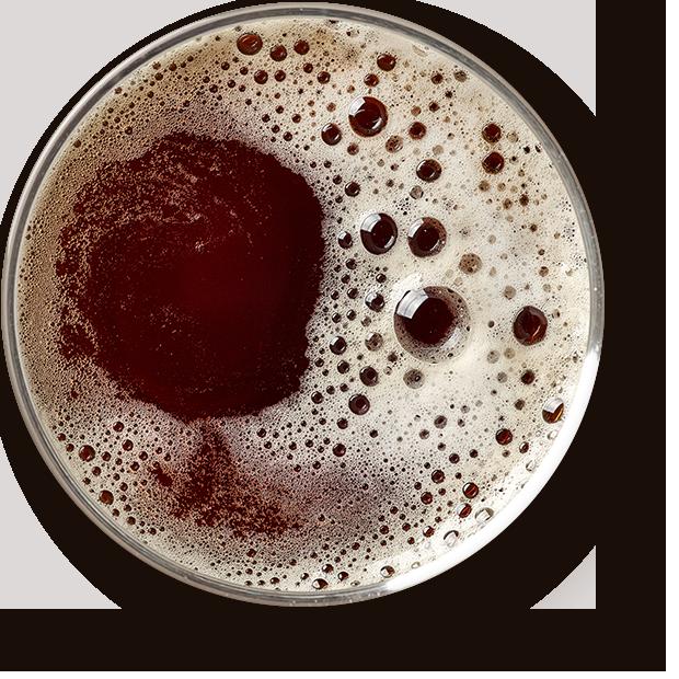https://www.la-choue.com/wp-content/uploads/2017/05/beer_transparent-1.png